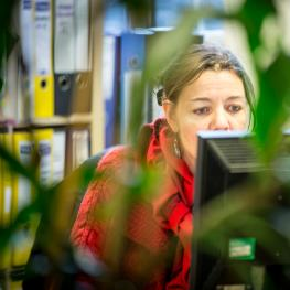 Tenant at their desk in Green Fish